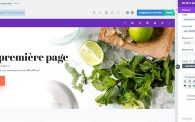 Formation WordPress à Nantes – CPF – OPCO – Pole emploi